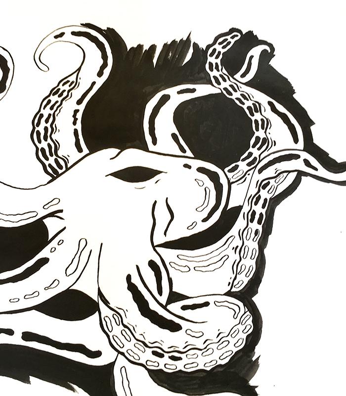Oktopus Reinzeichnung